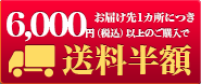 3600円以上購入で送料無料